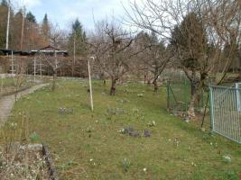 Foto 2 Wochenendgrundstück in Aichwald/Aichelberg