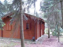 Foto 2 Wochenendhaus/Bungalow auf traumhaften Waldgrundstück