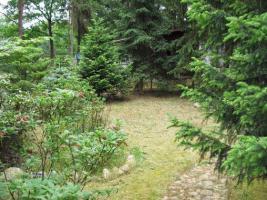 Foto 5 Wochenendhaus/Bungalow auf traumhaften Waldgrundstück