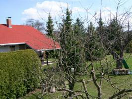 Foto 9 Wochenendhaus auf Eigentumsgartenland