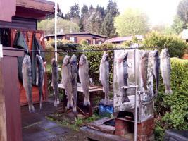 Foto 10 Wochenendhaus im Naherholungsgebiet Hessischer Westerwald