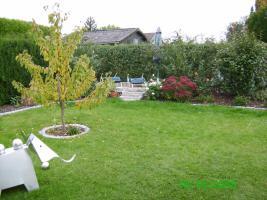 Foto 5 Wochenendhaus in Naherholungsgebiet Sassenberg