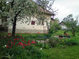 Foto 2 Wohnhaus Ungarn