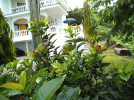 Foto 8 Wohnungsgemeinschaft auf den Seychellen im Paradies