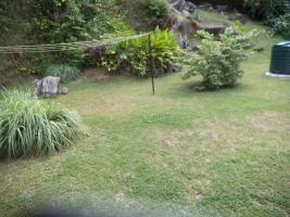 Foto 9 Wohnungsgemeinschaft auf den Seychellen im Paradies