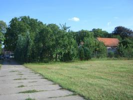 Foto 2 Wohnwagen-Dauerabstellplatz