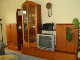 Wohnzimmeranbauwand mit Vitrine,  Erle