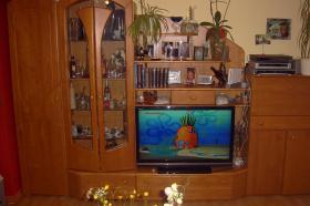 Foto 5 Wohnzimmerschrank Buche Holz