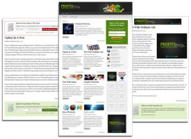 Foto 2 Wordpress Theme ''Profits Theme''