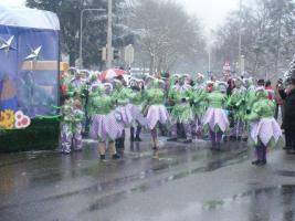 Foto 6 Wunder schönen Karneval Kostüme