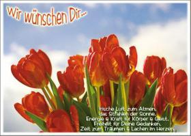 Foto 4 Wunderschöne Grußkarten Grüße & Liebesgrußkarten online bei Bildgedanken.com