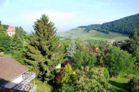 Foto 3 Wunderschöne Villa mit parkähnlichem Garten und Bauland
