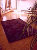 Foto 12 Wunderschöne, gepflegte Möbel! Bett, Essgruppe, Regale, Gartenmöbel, etc.!