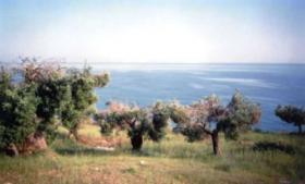 Wunderschoenes Grundstueck auf Halkidiki / Griechenland