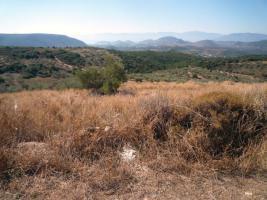 Wundersch�nes Grundst�ck nahe Nafplion/Griechenland