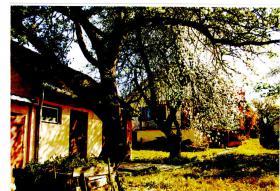 Wunderschoenes Haus in Ungarn, naehe Balaton