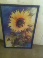 Wundersch�nes Sonnenblumen Bild