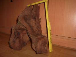 Foto 5 Wurzeln
