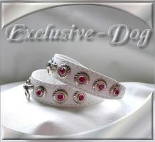 Foto 2 XS Strasshalsbänder Lederhalsbänder mini Chihuahua Halsband Prager Rattler