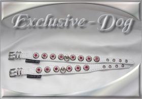 Foto 3 XS Strasshalsbänder Lederhalsbänder mini Chihuahua Halsband Prager Rattler