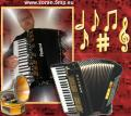 ZORAN ONE MAN BAND - LIVE MUSIK