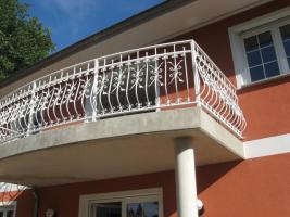 Foto 9 Zaun aus Polen, Gelander Tore Gitter Metalltreppen  Toranlage