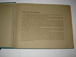 Foto 5 Zigarettenbilderalbum