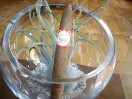 Foto 5 Zigarrensammlung aus den Jahren 1980 bis 2000 zu verkaufen