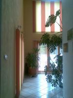 Foto 6 Zimmer in einer 3er WG
