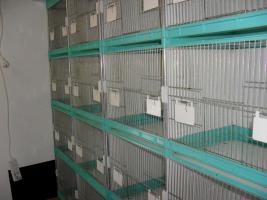 Foto 2 Zuchtboxen  Wellensittiche und kanarienv�gel