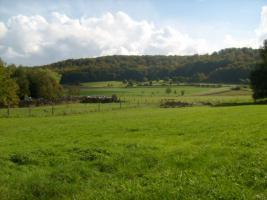 Foto 2 Zum Einzug bereit, Fachwerkhaus auf 4000qm Grundstück...