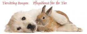 Zuverlässiger Tiersitter-Rügen Pflegedienst
