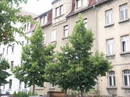 Foto 2 Zwei Häuser mit guter Infrastruktur