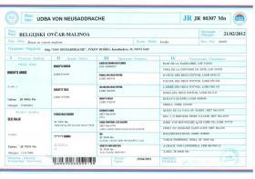 Foto 8 Zwei weibchen Belgische schäferhunde-Malinois za verkaufen!