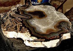 Foto 6 achatscheibe  edelstein mit einzigartigen einschlüssen