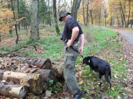 Foto 3 comford dog . seelsorgehund military comford dog squad k9  dog team nrw