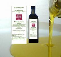das fl�ssige Gold - fruchtiges ''natives Oliven�l extra'' aus der Toskana, Italien - Agriturismo ''il Melograno''