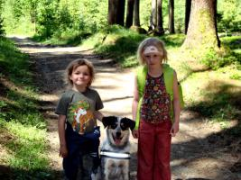 Foto 5 die kunterbunte Hundehütte, Hundeschule Kreis Steinfurt