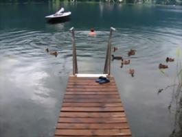eewohnungen am Ossiacher See zu vermieten