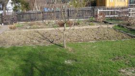 eilt aus gesundheitl.Gründen Kleingarten zu verk.