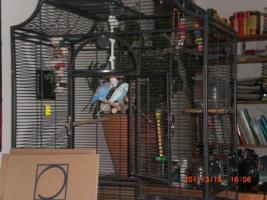 Foto 3 einen vogelkäfig