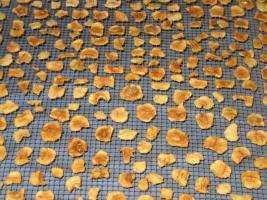 Foto 6 einheimische Naturkost direkt von Erzeuger: Trockenobst