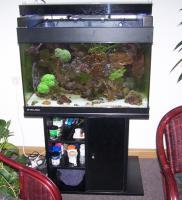 gebrauchtes Meerwasseraquarium komplett abzugeben