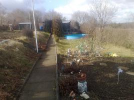 gepflegter Pachtgarten in 06114 Halle-Trotha mit Pool