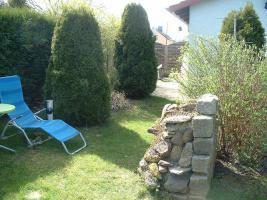 Foto 4 gepflegter und schöner Kleingarten mit massiven Steinhaus
