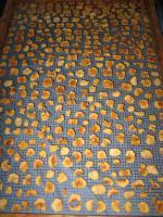 Foto 6 getrocknete Apfelstücke aus dem Naturpark Hoher Fläming