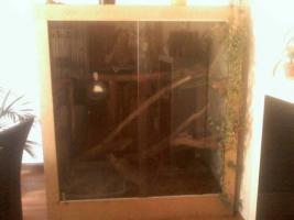 Foto 2 gr.Terrarium mit diversem Zubehör