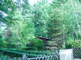 Foto 2 grosses Grundstück am Scharmützelsee