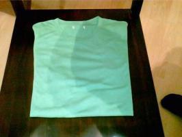 Foto 2 grünes, schlichtes und qualitativ hochwertiges Roscoe T-Shirt