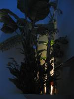 Foto 2 hochwertige Boden Einbau Leuchte aus Edelstahl IP 68